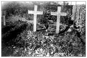 Graves of Moriarty and Goldman - General Cemetery Nieuwleusen