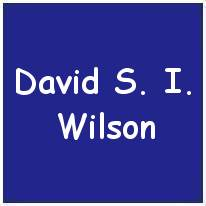631262- Sergeant - Flight Engineer - David Strachan Wilson - RAF - Age 21 - KIA