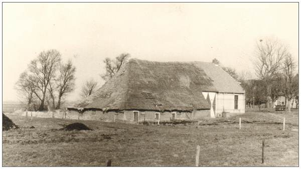 Leeuwte 37 - Farm of Freek van Benthem - photo April 1972