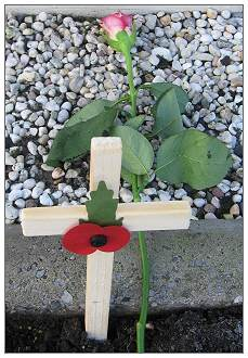 Poppy 2011 Moggridge