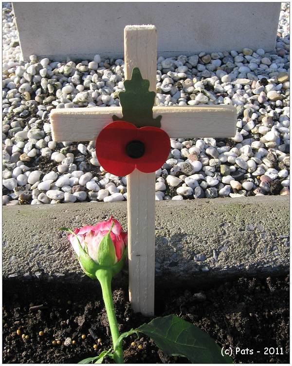 Remembrance Day - with 2nd version op Poppy cross